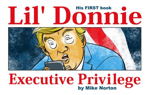 Image comics lil donnie hardcover vol 01 executive privilege 20180530